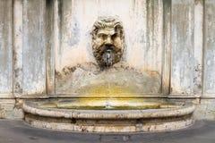Fontanna w podwórzu Watykański muzeum fotografia royalty free
