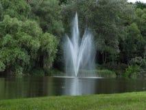 Fontanna, woda, strumień, zieleń, las Zdjęcie Royalty Free