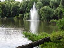 Fontanna, woda, strumień, zieleń, las Obraz Royalty Free