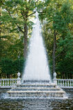 fontanny peterhof ostrosłup Obraz Royalty Free