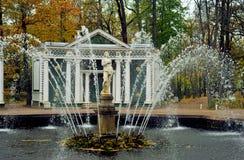 Fontanny Peterhof, Rosja Obrazy Stock