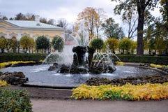 Fontanny Peterhof, Rosja Obrazy Royalty Free