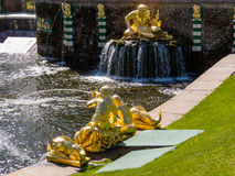 Fontanny w Peterhof Obraz Royalty Free