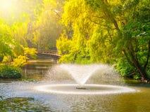 Fontanny w zielonym lato parka stawie Fotografia Royalty Free