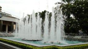 Fontanny woda w ogródzie zbiory wideo