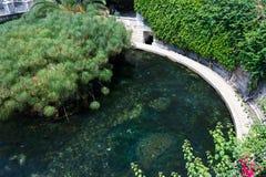 Fonte Aretusa est une cascade sur l'île d'Ortigia, dans l'ol image stock