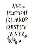 Fonte calligrafica dell'inchiostro scritto a mano Iscrizione moderna della spazzola Alfabeto disegnato a mano Fiori dipinti a man Immagini Stock