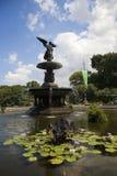 Fonte Central Park de Bethesda Imagens de Stock