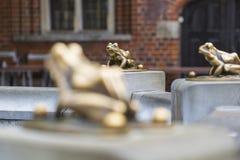 Fonte com a rã afortunada dourada - o símbolo da cidade de Torun (Pola imagens de stock