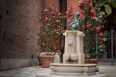 Fonte da criança montado em uma tartaruga em Siena, Itália Imagens de Stock Royalty Free