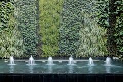 Fonte de água com a parede da planta viva imagens de stock