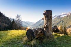 Fonte de água de madeira para vacas Foto de Stock Royalty Free