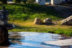Fonte de água e templo de ruínas em Pamukkale Foto de Stock
