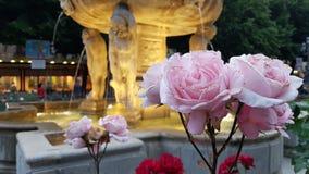 Fonte de Granada cercada por rosas na noite foto de stock