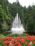 Fonte de água com as flores vermelhas no primeiro plano Imagens de Stock Royalty Free