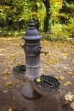 Fonte de ?gua no parque Foto de Stock Royalty Free