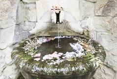 Fonte de pedra velha com flores Imagem de Stock