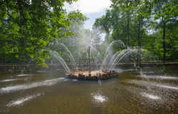 Fonte de Peterhof Foto de Stock Royalty Free