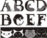 Fonte del gatto Fotografie Stock