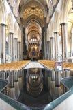 Fonte della cattedrale di Salisbury fotografie stock libere da diritti