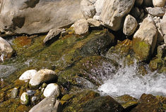Fonte della montagna Immagine Stock