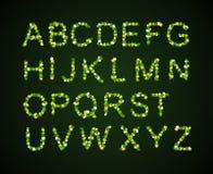 Fonte delle foglie verdi, giorno di St Patrick, fonte del trifoglio, Immagine Stock Libera da Diritti