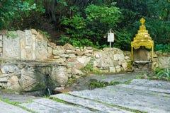 Fonte di prima generazione di taran di Rodnik del fiume, Fotografie Stock