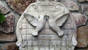Fonte do cimento com as duas pombas na parede da rocha video estoque