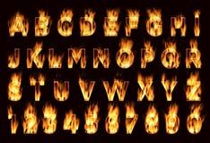 Fonte do fogo Letras da ameixa Fonte no fogo Foto de Stock