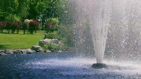 Fonte do jardim Respingo da fonte no movimento lento Fonte de água no parque do verão video estoque