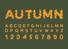Fonte do outono Folhas do amarelo do alfabeto ABC outonal Imagens de Stock Royalty Free