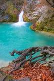 Fonte do rio Urederra Fotos de Stock Royalty Free