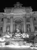 Fonte do Trevi - Roma Fotografia de Stock