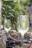 Fonte do vinho branco Imagens de Stock Royalty Free