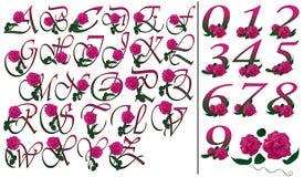 Fonte e floreale rosa messo numeri Immagine Stock