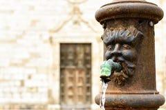 Fonte em Norcia, Itália Fotografia de Stock Royalty Free
