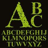 A fonte floral feita com folhas, letras naturais do alfabeto ajustou-se, vect ilustração royalty free