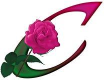 FONTE floreale della lettera C Immagine Stock