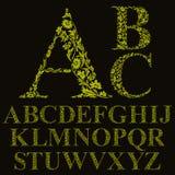 Fonte floreale delle lettere di stile d'annata, alfabeto di vettore Fotografie Stock Libere da Diritti