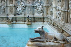 Fonte Gaia, Siena Stock Photography