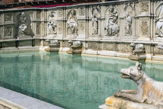 Fonte Gaia, Siena, Italy. Royalty Free Stock Photography