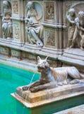 Fonte Gaia (springbrunnen av glädje), Piazza del Campo, Siena, Tuscany, Arkivfoton
