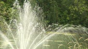 Fonte na lagoa Paisagem panning filme
