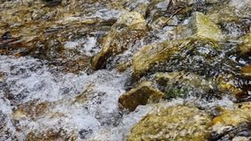 Fonte naturale di acqua pulita stock footage