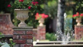 Fonte no jardim de rosas video estoque