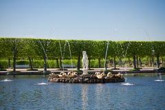 Fonte no parque de Peterhof Fotografia de Stock Royalty Free