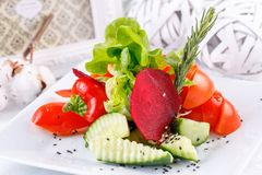 Fonte original do corte vegetal brilhante e suculento fotos de stock