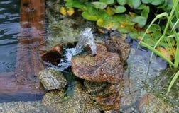 Fonte que borbulha em um jardim do verão Imagens de Stock
