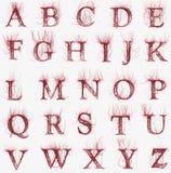 Fonte tipografica astratta dell'arteria Immagini Stock