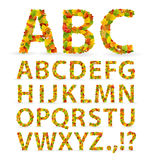 Fonte tipografica dei fogli di autunno Fotografie Stock